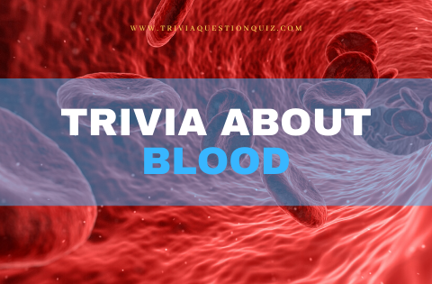 trivia-about-blood