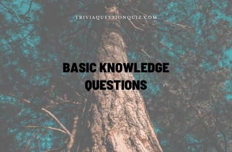 basic knowledge questions