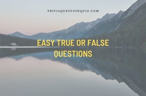 easy true or false questions