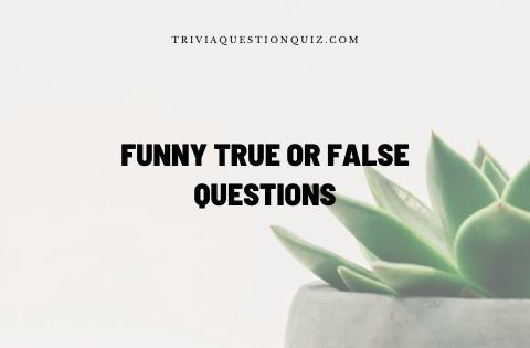 funny true or false questions