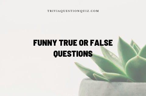 funny true or false questions