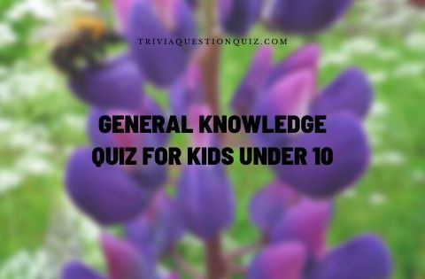 general knowledge quiz for kids under 10