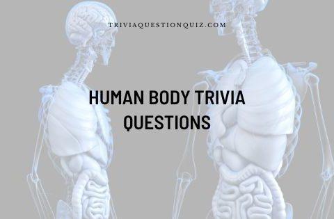 human body trivia questions