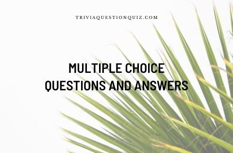 Multiple Choice Questions and Answers
