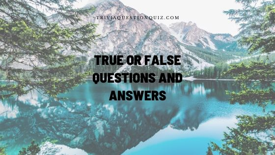 true or false questions and answers