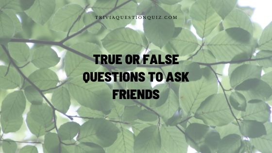 true or false questions to ask friends