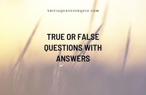 true or false questions with answers