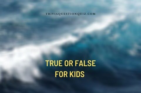 true or false for kids