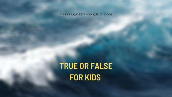 true or false for kids