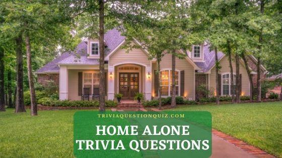 home alone trivia questions home alone quiz questions home alone trivia questions and answers home alone 2 trivia questions home alone movie trivia questions and answers home alone quiz questions and answers home alone trivia quiz