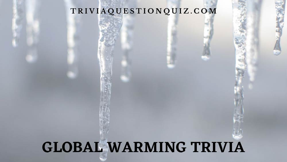 global warming trivia global warming quiz global warming questions and answers quiz global warming quiz worksheet mcq on global warming global warming mcq global warming quiz questions and answers pdf global warming quiz questions quiz on global warming with answers quiz on greenhouse effect and global warming national geographic global warming quiz questions for global warming quiz gk questions on global warming