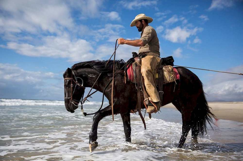 horse riding trivia